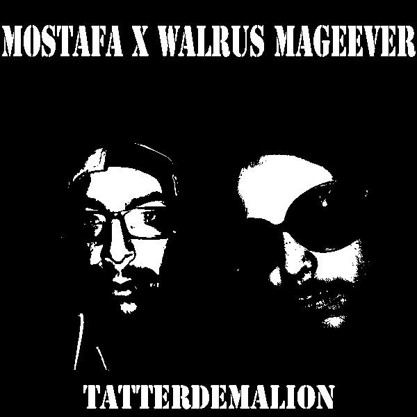 Mostafa x Walrus Mageever Tatterdemalion